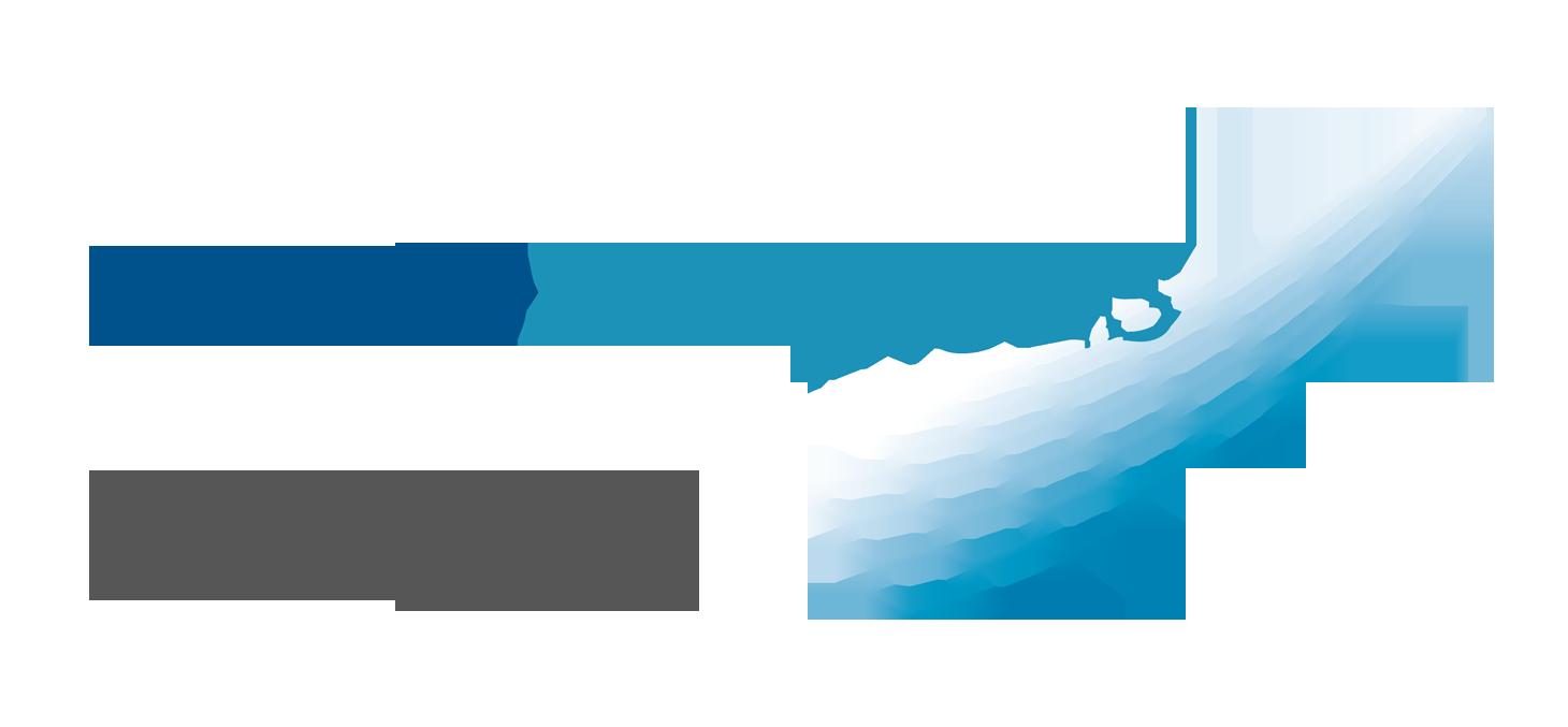 Fondation Nanosciences logo actu