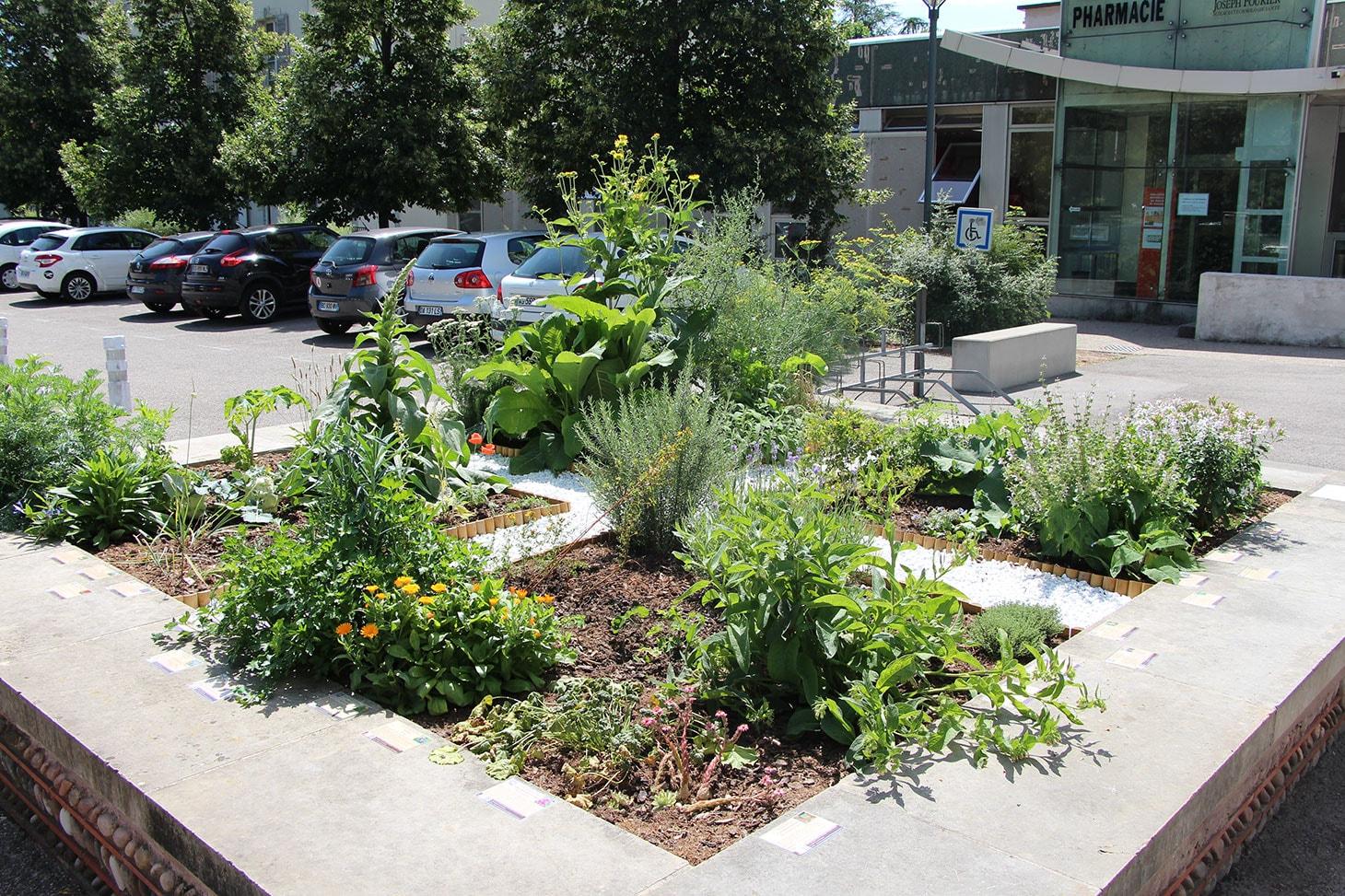 Le jardin Médiéval des 4 humeurs véritable outil pédagogique pour les étudiants en médecine et pharmacie